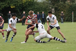 Tiffin Rugby 3